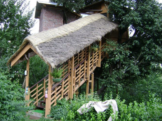Best Tree Houses in India- Manali Tree Houses Cottage
