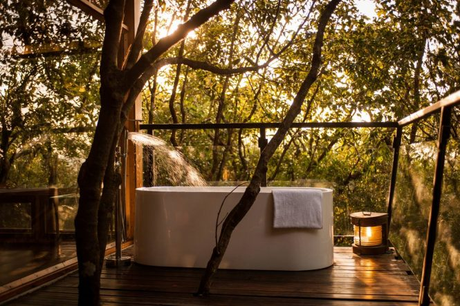 Best Tree Houses in India- The Machan