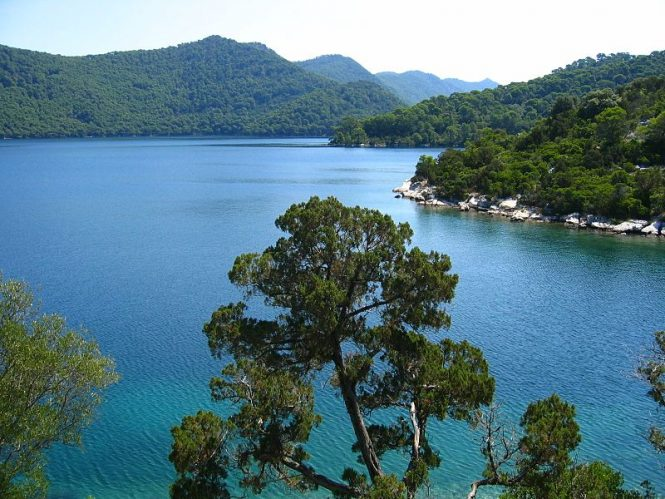 Mljet National Park- places to visit in Croatia
