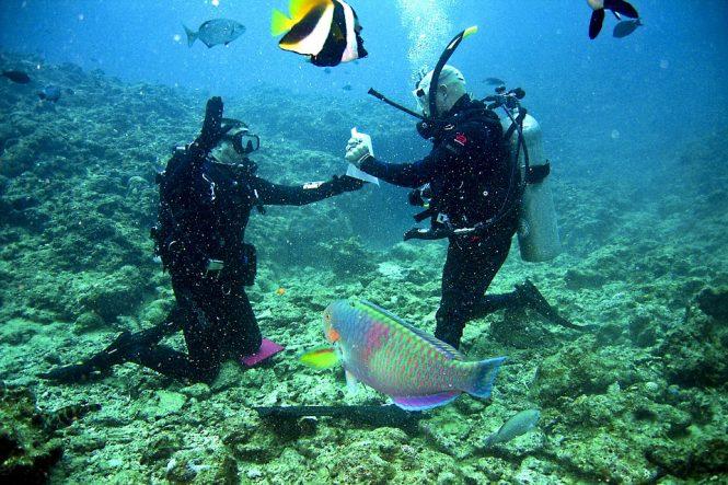 Sea Walking-Andaman adventures