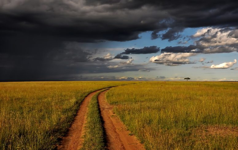 Travelling to Kenya? These are the Top Places to visit in Kenya