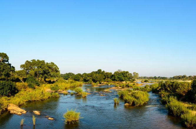 Kruger National Park - Wildlife Safaris in South Africa