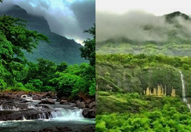 Bhimashankar- Places to Visit near Mumbai During Monsoon