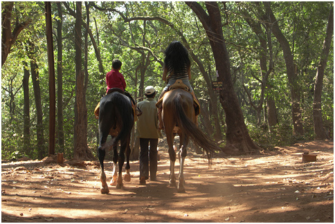 Horse Riding-Places to visit in chail