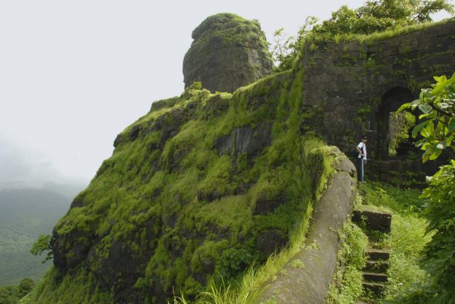 Karnala- Places to Visit near Mumbai During Monsoon