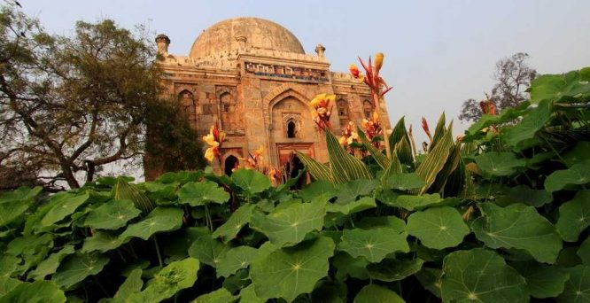 Lodhi Garden-Tourist Places in Delhi