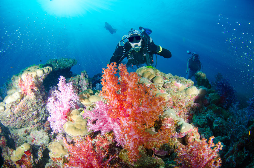 Scuba Diving-Havelock Island