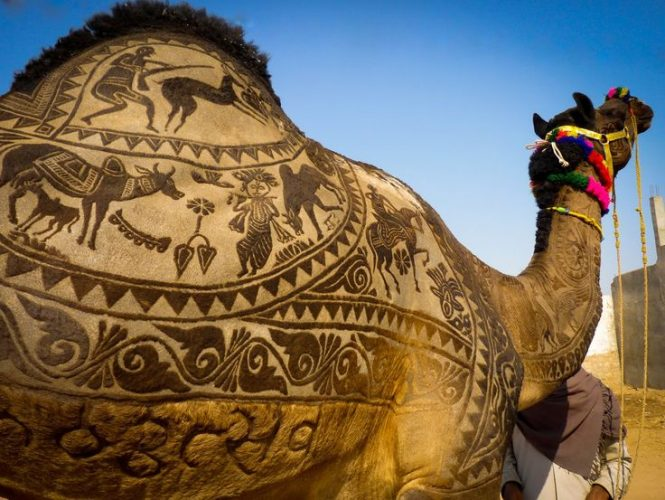 New Delhi to Jaipur and Pushkar- Road Trip Packages