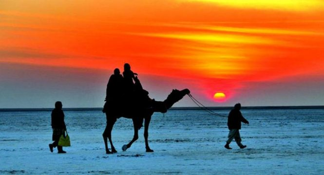 Rann Of Kutch -Luxury experiential travel
