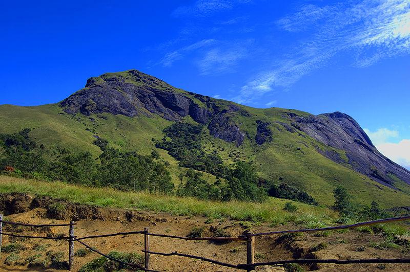 Anamudi peak, Munnar